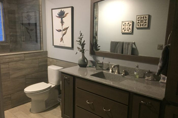 The Design Studio Bathroom Remodel Breese